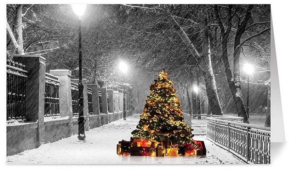 Christmas Holiday Cards - One Jade Lane Set Of 18